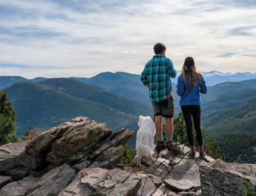 5 Rutas en Asturias para realizar con vuestros perros