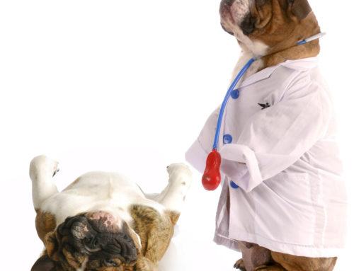 Adelantarse a las enfermedades no es ciencia-ficción