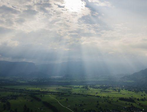 Día de la tierra: LA reflexión