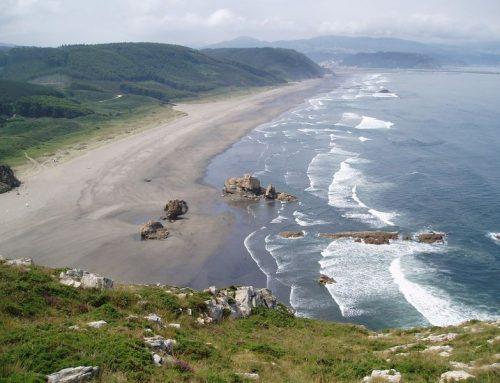 Disfruta del verano en Asturias junto a tu peludín