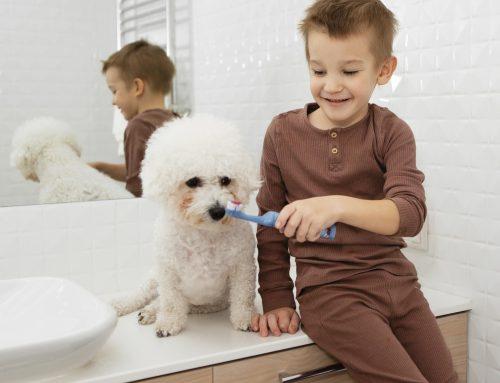¿Cómo prevenir el sarro en los perros?